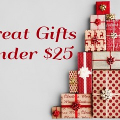 5 Great Gifts Under $25